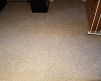 Hall carpet after cleaning